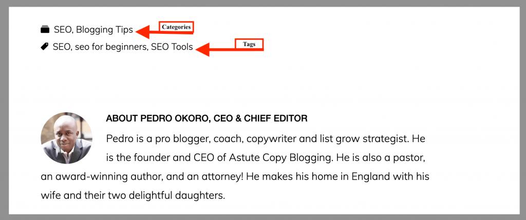 19 categories tags wordpress yoast SEO meta tags